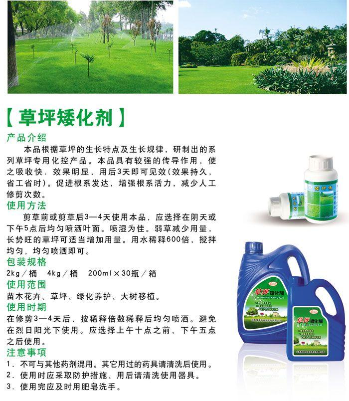 草坪矮化剂